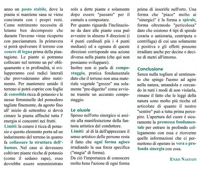 Le regole dell'orto sinergico - commento di Enzo Nastati Aa11