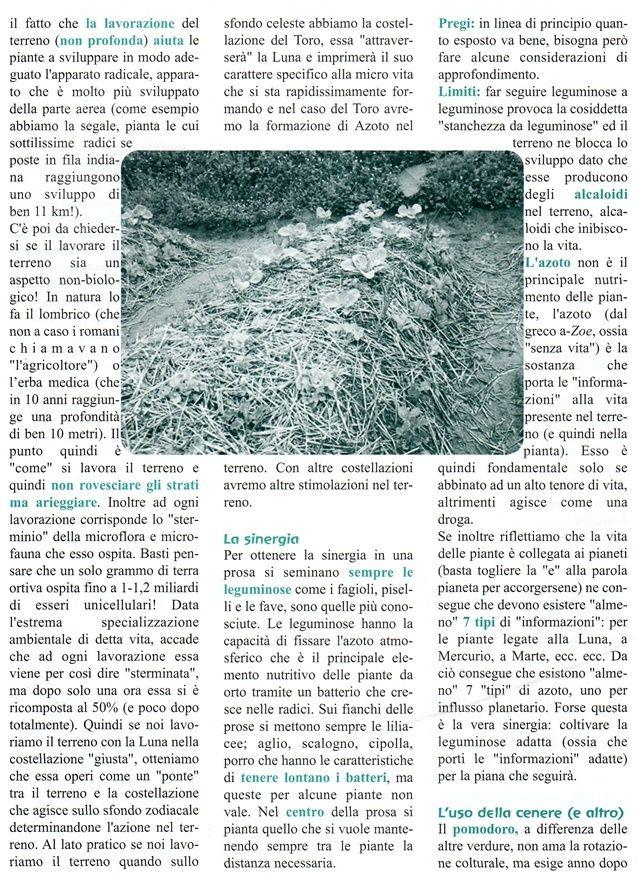 Le regole dell'orto sinergico - commento di Enzo Nastati Mkm10