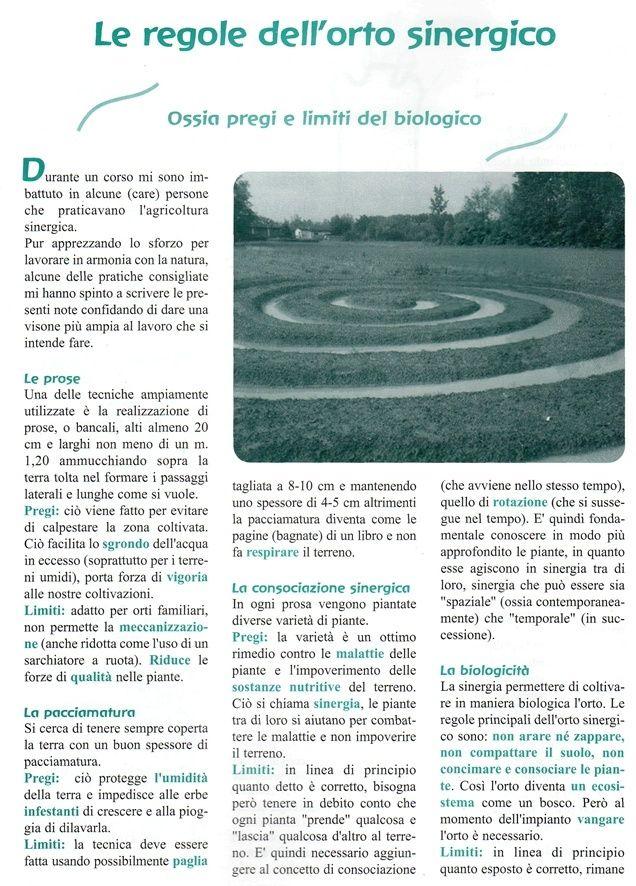 Le regole dell'orto sinergico - commento di Enzo Nastati Rtrzgr10