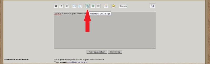 TUTO: Insérer/héberger une image Atape310
