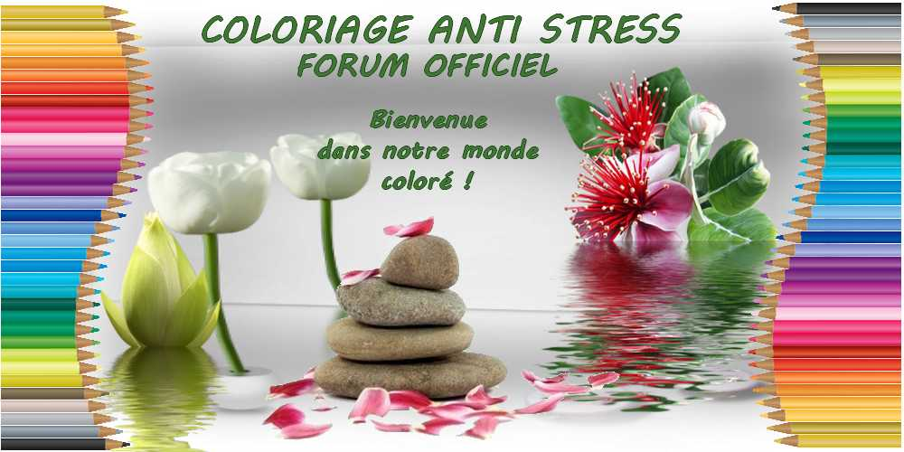 Coloriage anti-stress art-thérapie coloriage zen adulte