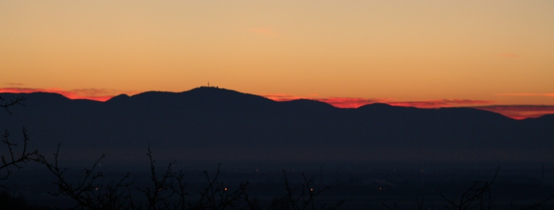 Les Alpes et la Forêt Noire ce matin Foret-11