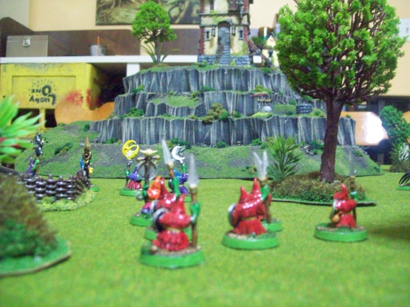Forest goblins warband 100_1921