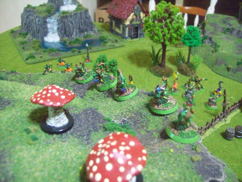 Forest goblins warband 100_1923