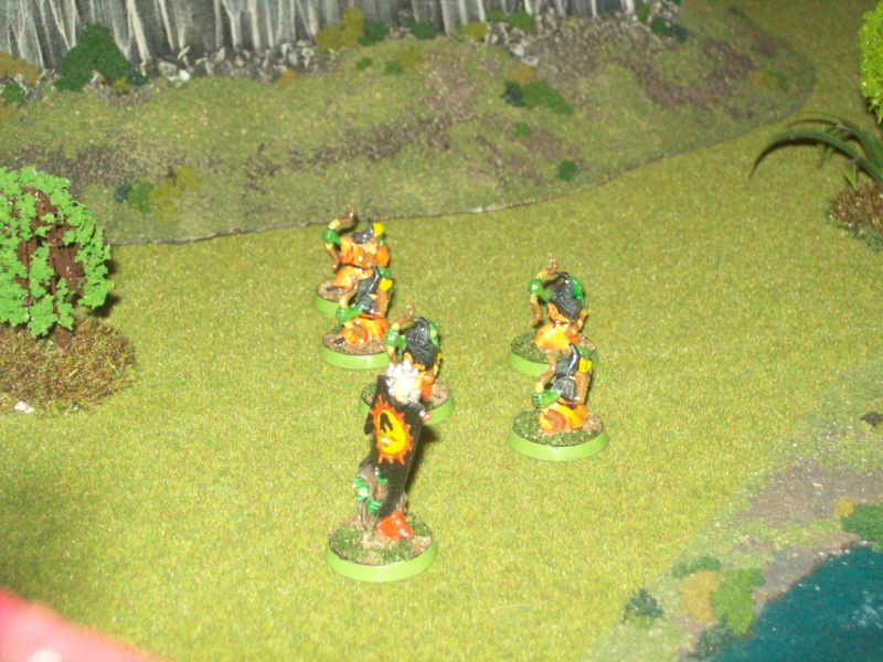 Forest goblins warband 100_1924