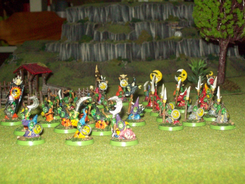 Forest goblins warband 100_1926