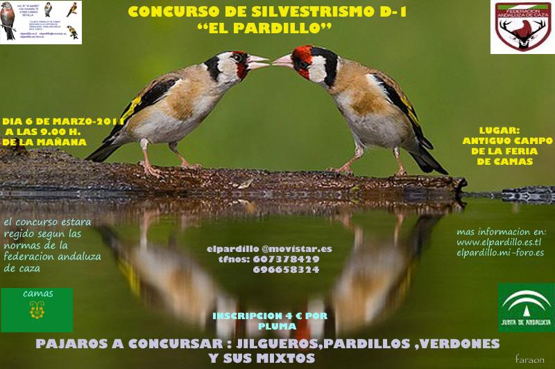 CARTEL CONCURSO SOCIAL 2011 y MAPA Reflej10