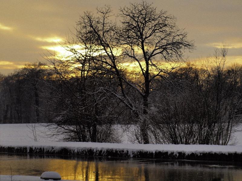 Vos plus belles photos du mois de décembre 2010 Pc263312
