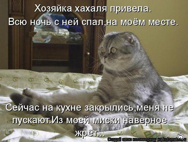 Позитив ))))Демотиваторы, анекдоты и прочее))) 1210