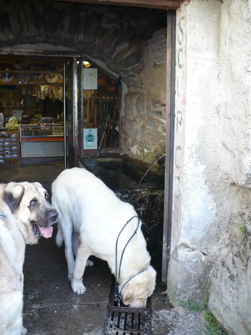 Tragédie en Ardèche P1100811