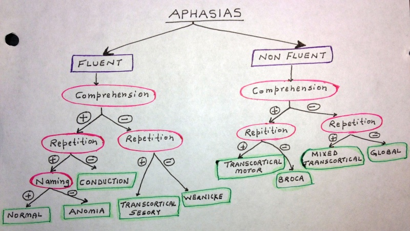 Types of Aphasia: Diagrammatic Explanation Aphasi10