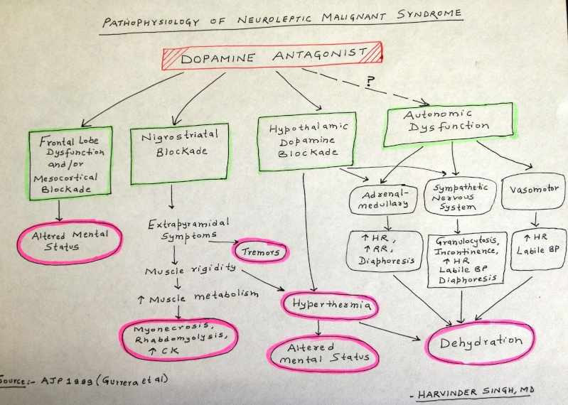 Pathophysiology of Neuroleptic Malignant Syndrome Nms_pa10