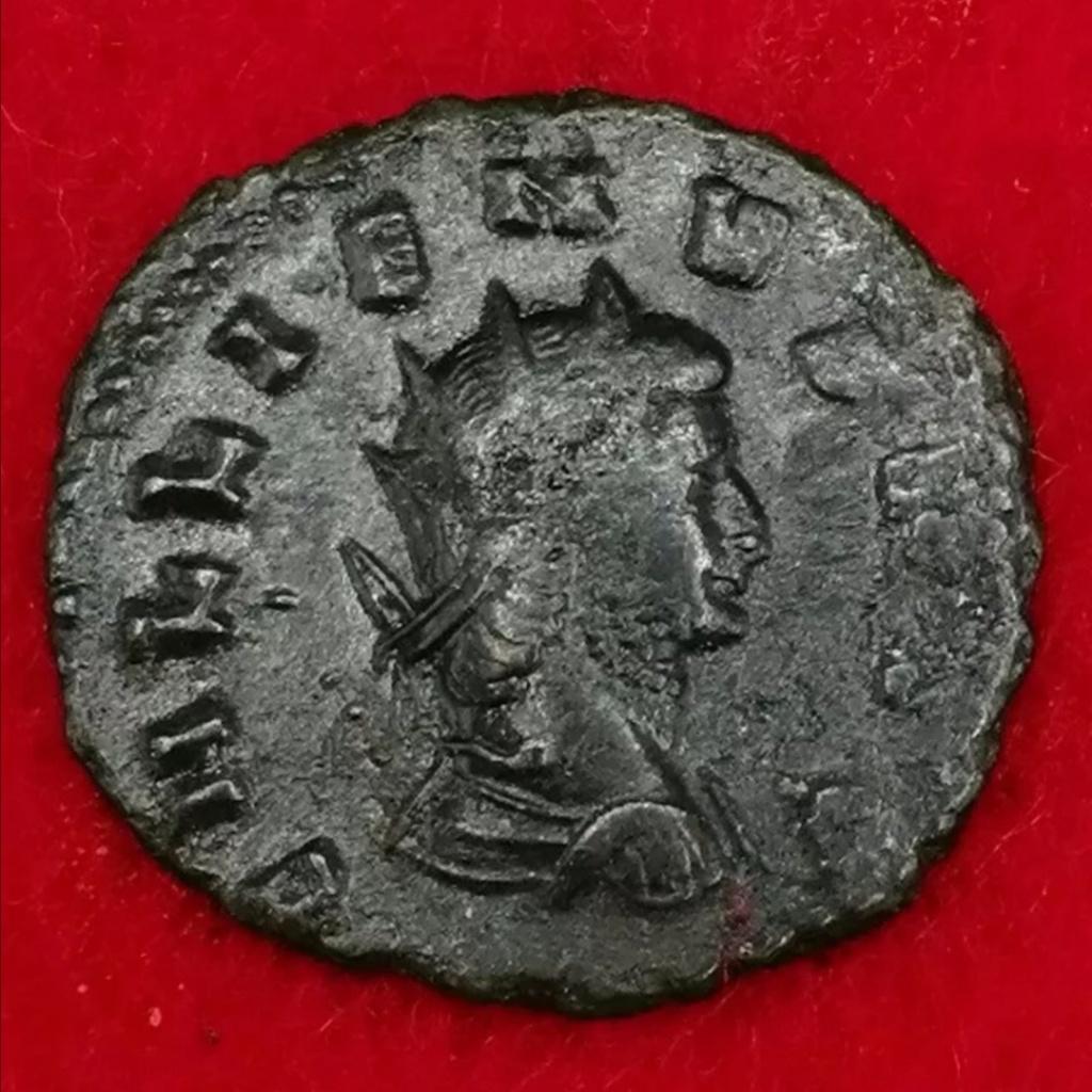 Gallienus PAX AVG Screen16