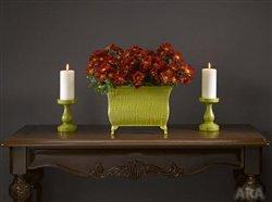 Update your decor with Hot Fall Colors 16458710
