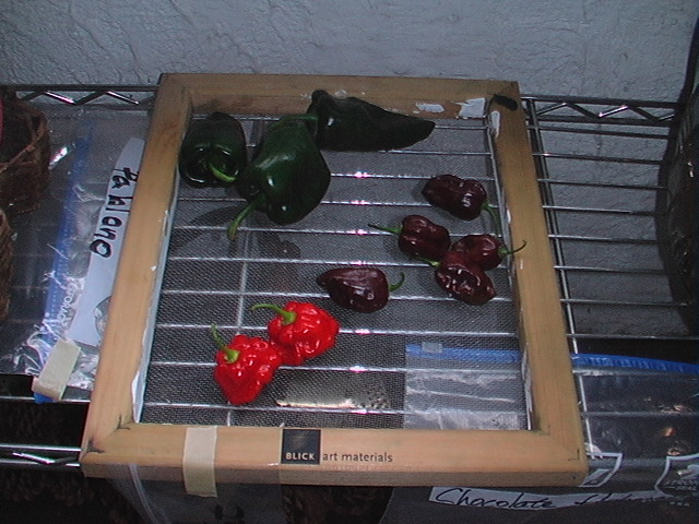 really hot peppers - Page 2 2012-011
