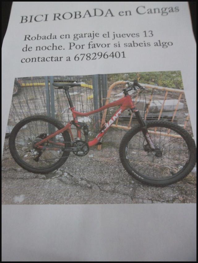 Bici Giant Reing robada en Cangas Sam_2041