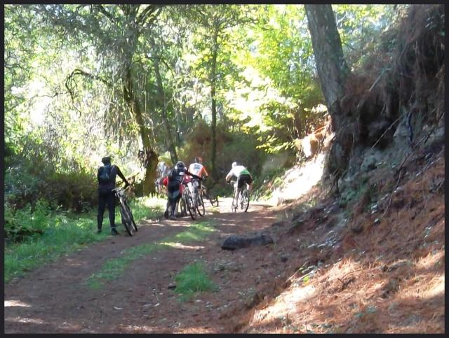 Ruta del Domingo 14/10/´12 (V Marcha Raiña Aragonta) Sam_2221