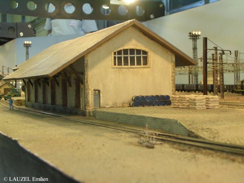 Ambiances ferroviaires - Page 4 Dscn2112