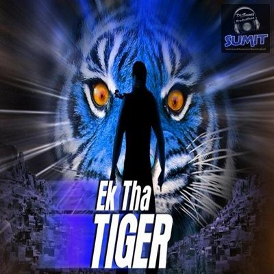 MashAllah (Ek Tha Tiger) - DjSumit (Club Edit) Mashal10