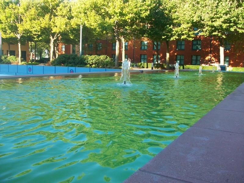 De la chaleur, des incivilités, une demande en fiançailles : bref, mon séjour à Disneyland Paris du 09 au 14 août ! 100_0812