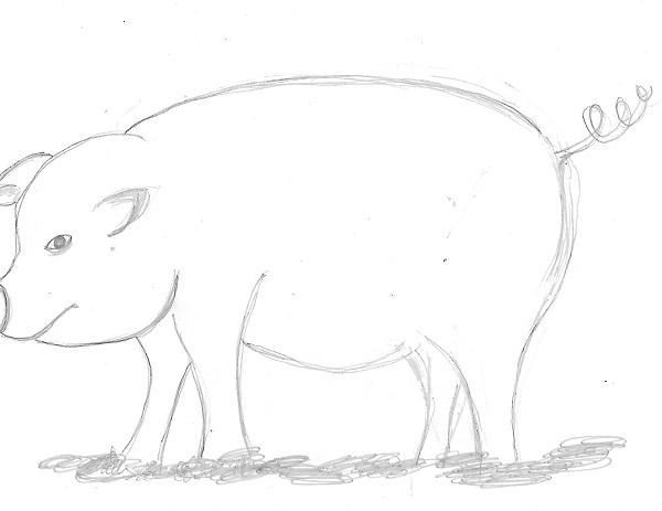 Les résultats du test du cochon !!!! 29420911