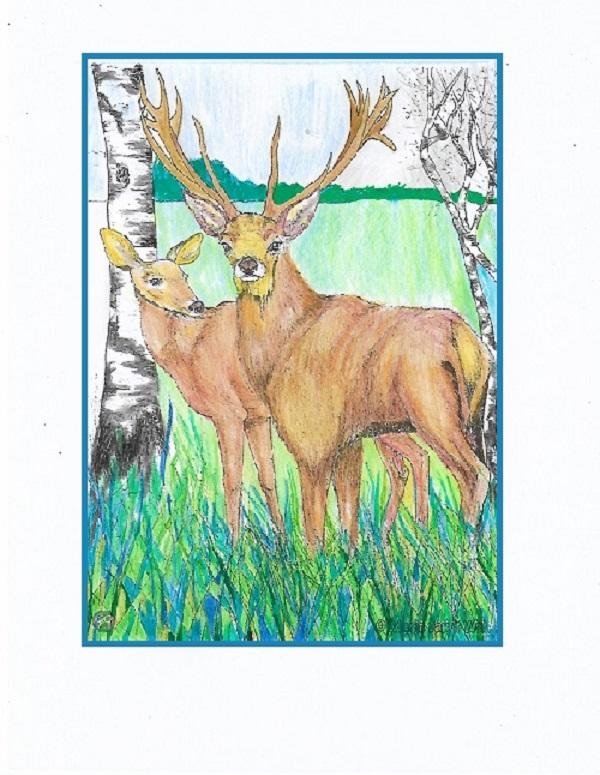 coloriage anti-stress pour adulte - Page 5 Concou20