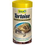 Tetra tortoise Images12