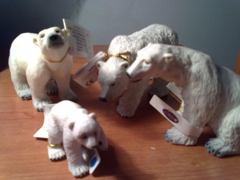PAPO Polar bears and Boars = 2 families completed.  20092010