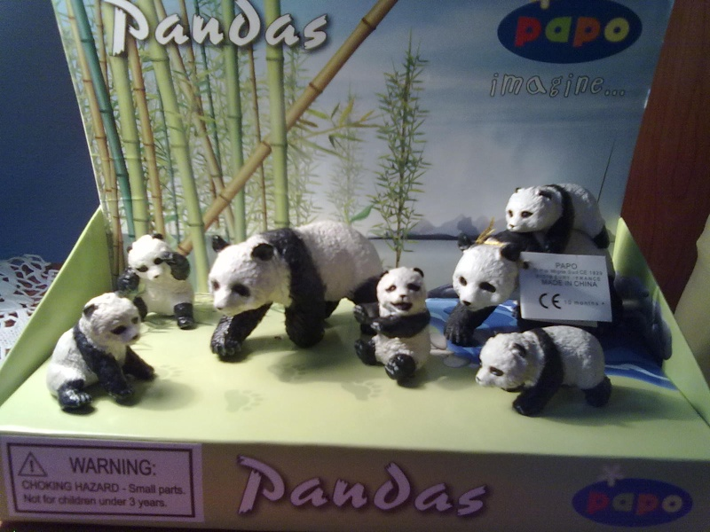 PAPO Polar bears and Boars = 2 families completed.  27092010