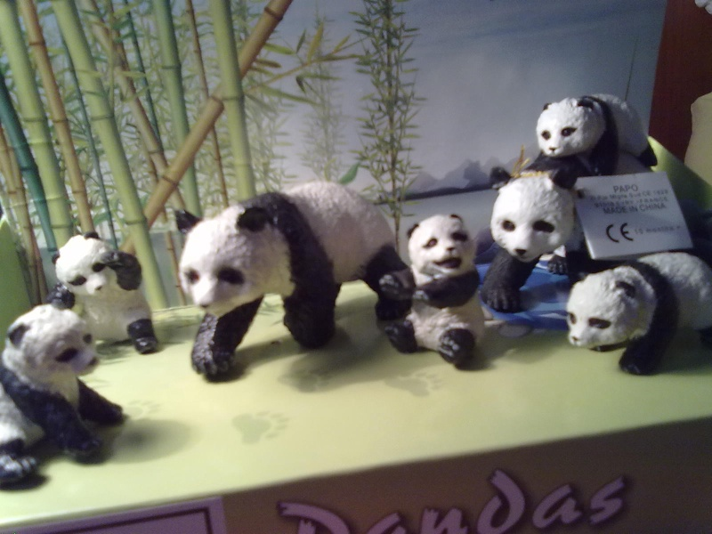 PAPO Polar bears and Boars = 2 families completed.  27092011