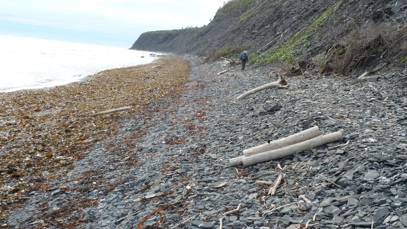 Vacances en Gaspésie avec 1200 photos ... P1070914