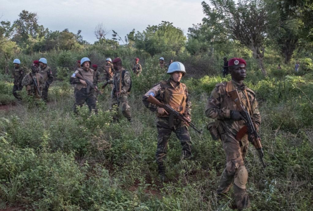 Maintien de la paix dans le monde - Les FAR en République Centrafricaine - RCA (MINUSCA) - Page 17 20190525