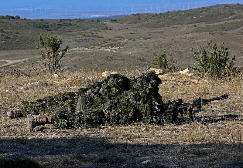 Armée Espagnole/Fuerzas Armadas Españolas - Page 7 49089711