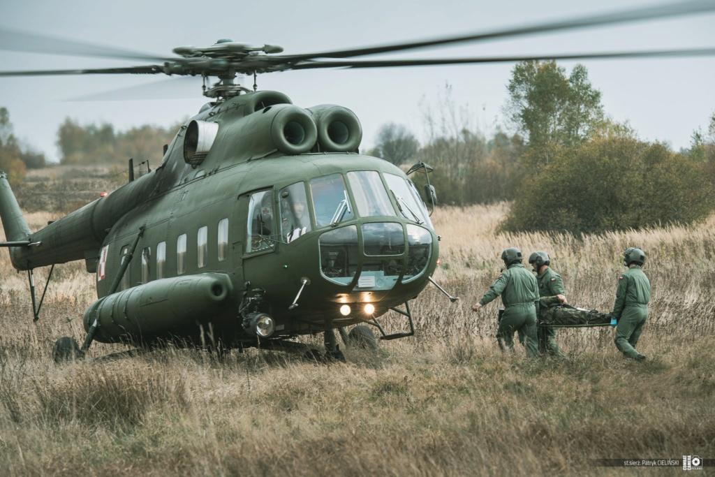Les Forces Armées Polonaises/Polish Armed Forces - Page 26 75231610