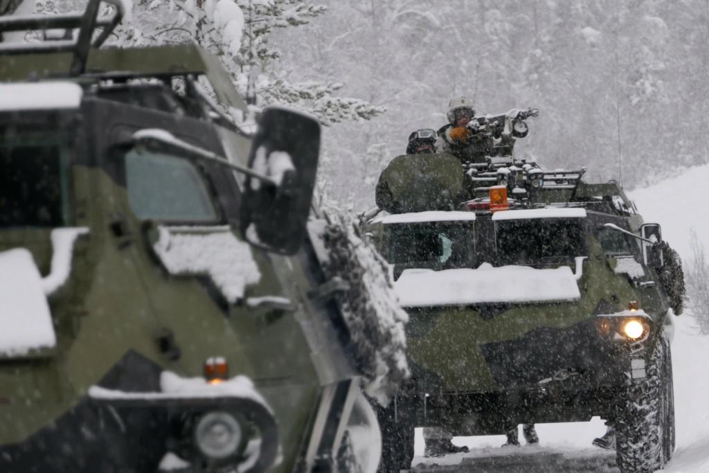 Armée Finlandaise / Finnish Defence Forces / puolustusvoimat - Page 10 75282410