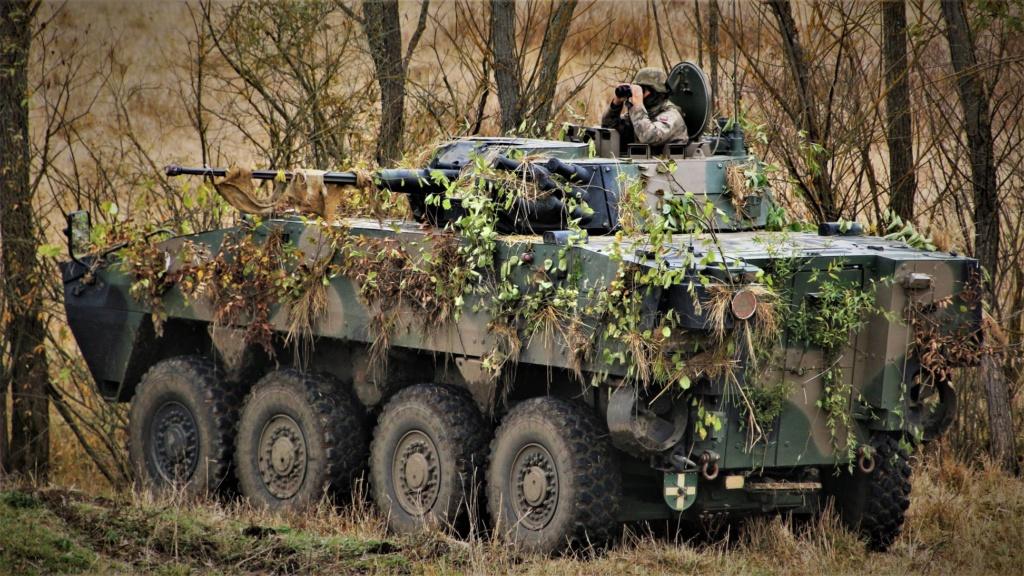 Les Forces Armées Polonaises/Polish Armed Forces - Page 26 76751510