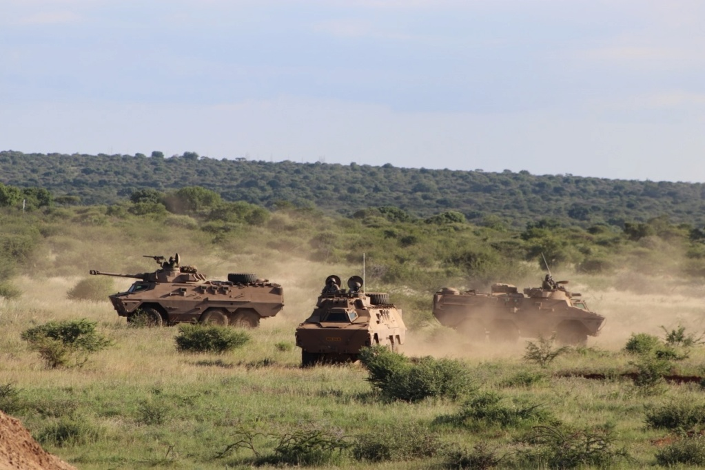 South African National Defence Force (SANDF) - Page 12 Armed611