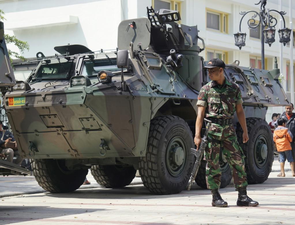Armée Indonésienne / Indonesian National Armed Forces / Tentara Nasional Indonesia - Page 25 Bzu80v10
