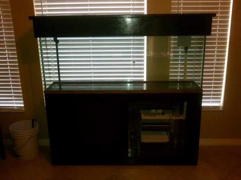 My 81g Build Img_2013