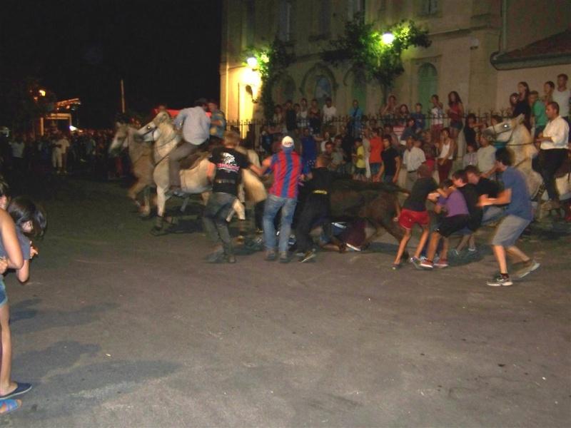 bandido de nuit  fete votive de villevielle  le 16 aout 2012 manade robert h 100_3576