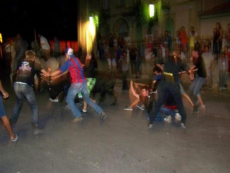 bandido de nuit  fete votive de villevielle  le 16 aout 2012 manade robert h 100_3577