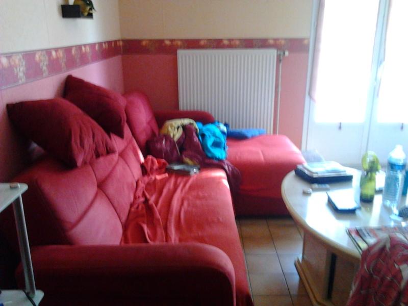 quel rideau pour ma salle a manger Photo013
