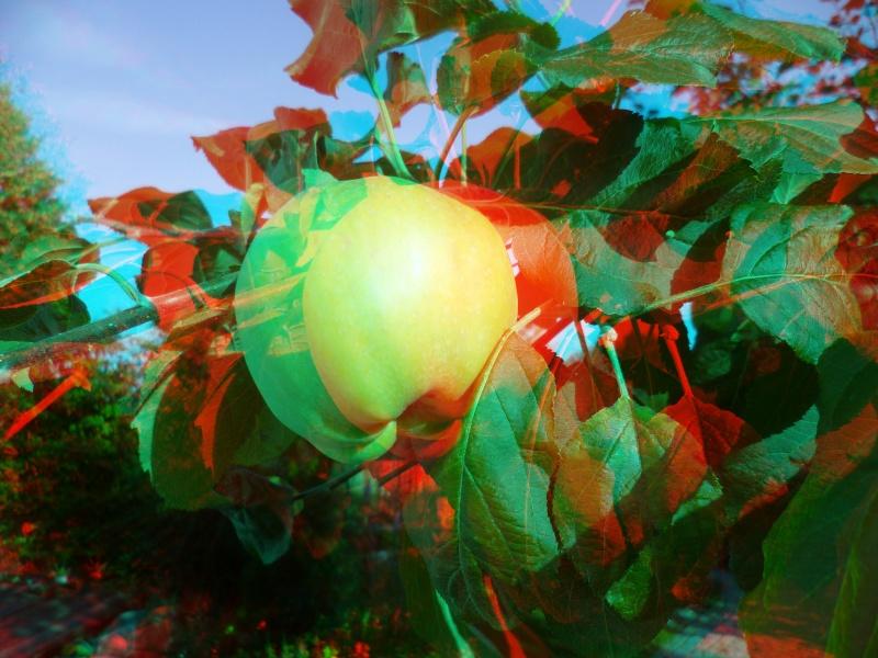3D-Fotografie Apfel10