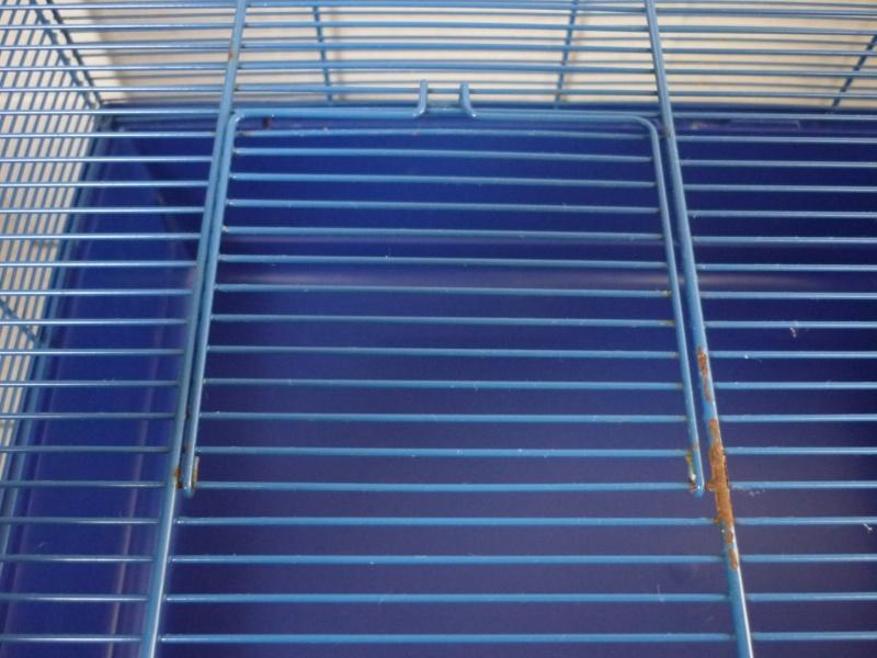 Vends cage Tom + cage plus petite Cage_b11