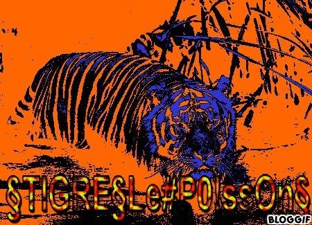 Présentation des §TIGRE§ Reelfi10