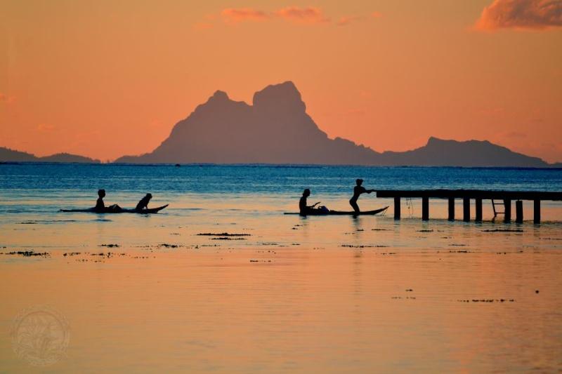 [Associations] Anciens Marins de Réserve de la Polynésie française 31438010