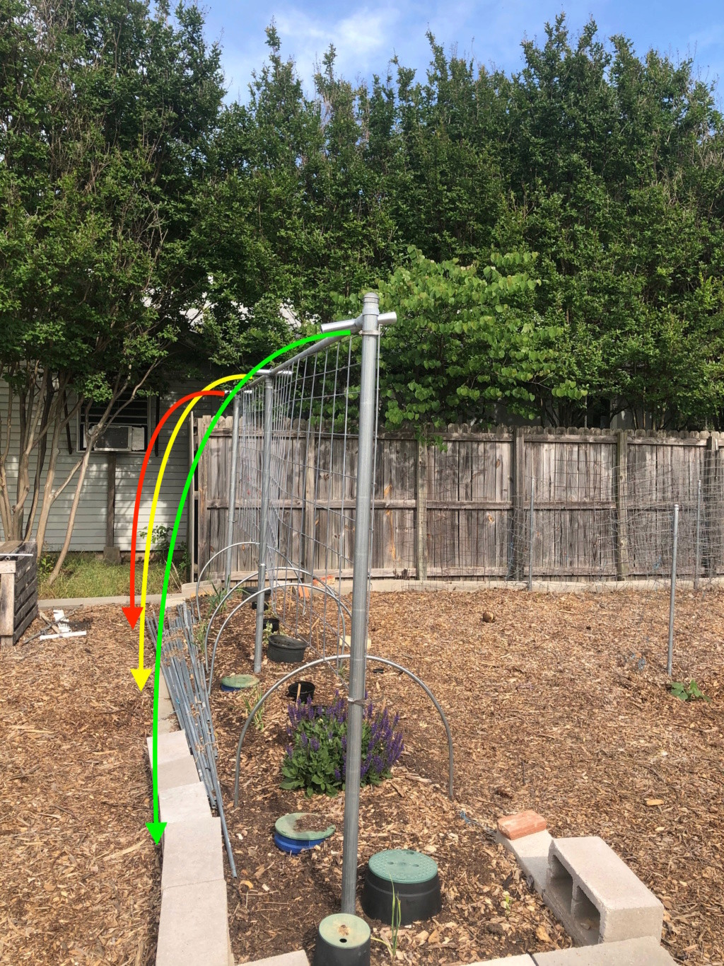 The SFG Journey- preparing Hoops on SFG Beds for future shade cloth 1_pre_10