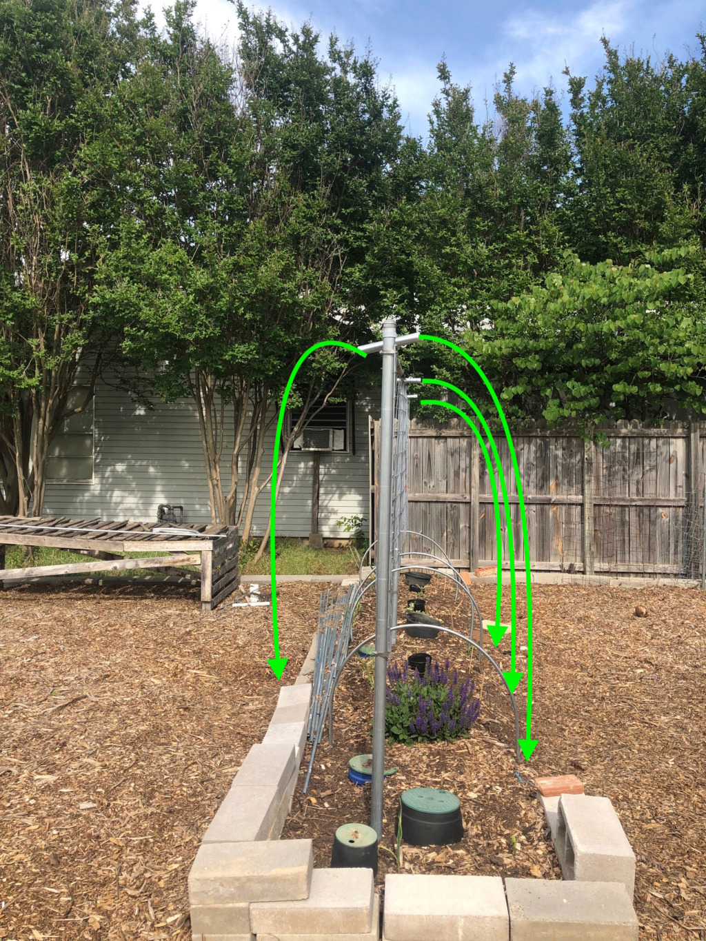 The SFG Journey- preparing Hoops on SFG Beds for future shade cloth 2_preh10