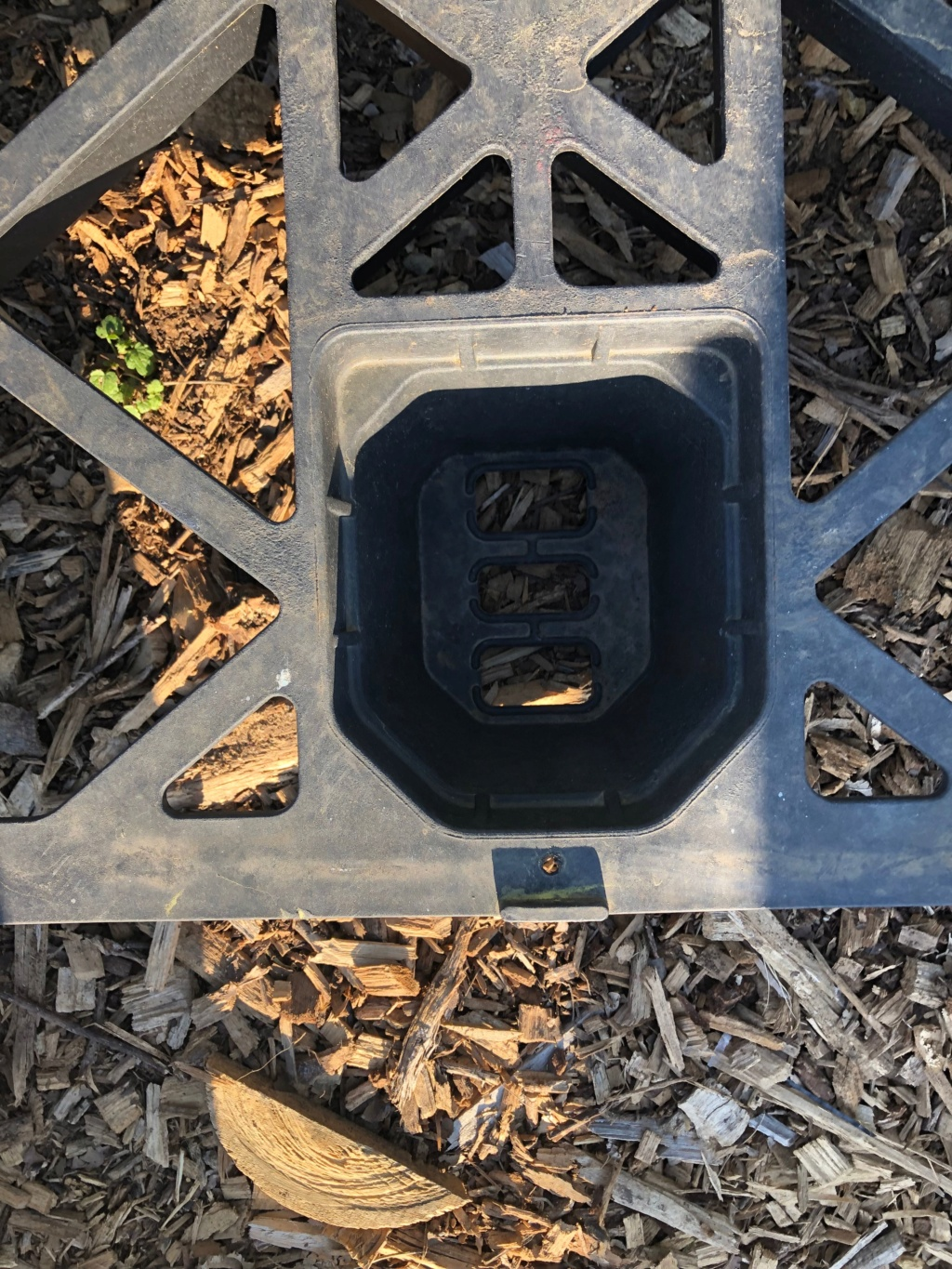 The SFG Journey-Johnson Su Bioreactor for composting, No turning 2nd_co12