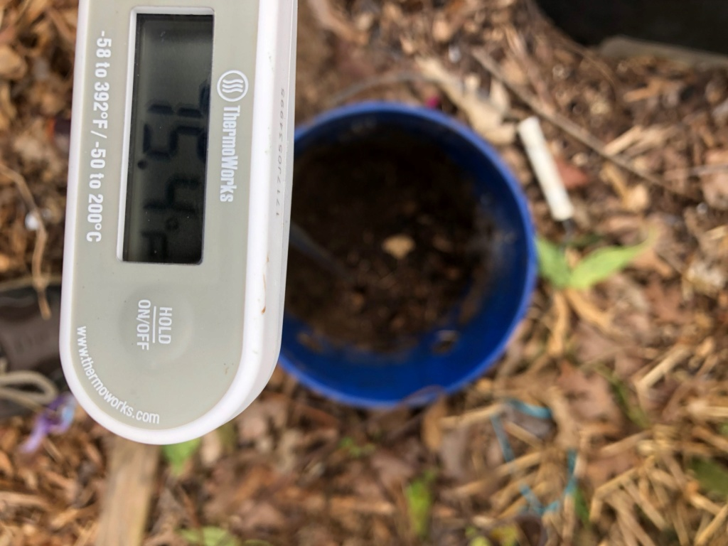 The SFG Journey:Vermicompost Garden Bucket(VGB): How fast do worms eat in a VGB experiment  - Page 2 Img_0032